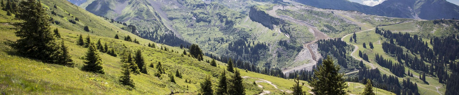 Hochzeit Canton du Valais