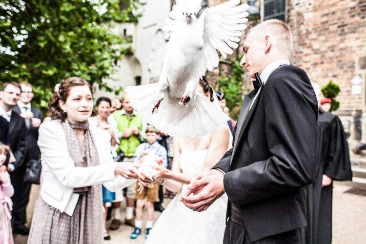 Janine-David-Hochzeit5-12