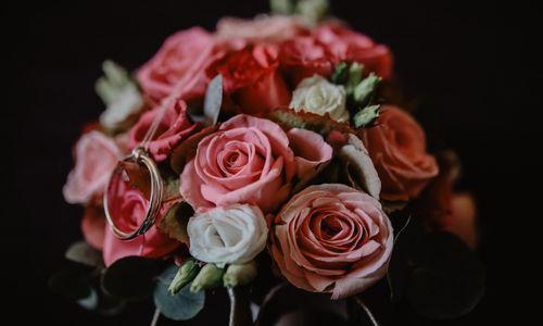 Hochzeitsplanung-Perfect Day - Hochzeitsplaner aus Kürten