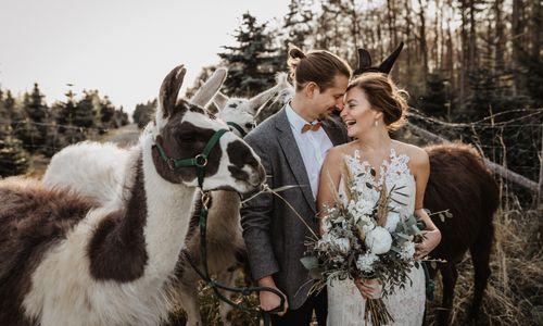 Julia Löffler Fotografie - Hochzeitsfotograf aus Gundelsheim
