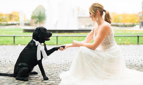 Heike Moellers Photography - Hochzeitsfotograf aus Hilden
